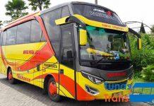 Daftar Harga Sewa Bus Pariwisata di Malang Murah Terbaru