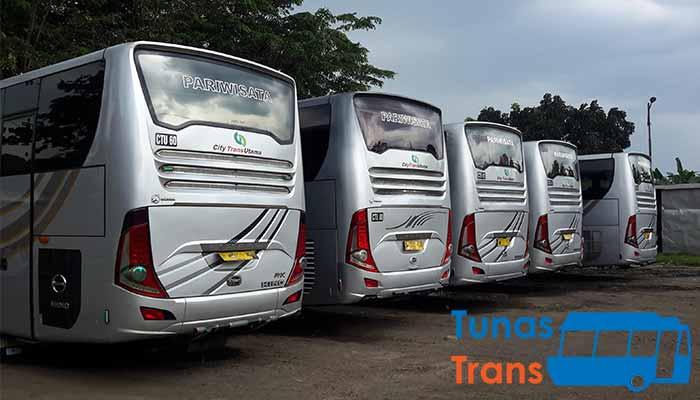 sewa bus pariwisata di Bogor terbaru murah