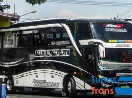 Daftar Harga Sewa Bus Pariwisata di Magetan Murah Terbaru