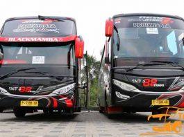 Daftar Harga Sewa Bus Pariwisata di Banyuwangi Murah Terbaru