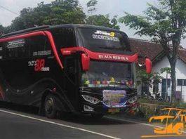 Daftar Harga Sewa Bus Pariwisata di Jember Murah Terbaik