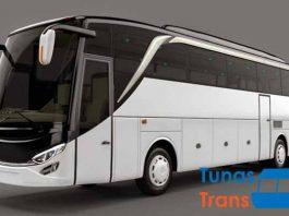 Daftar Harga Sewa Bus Pariwisata di Ponorogo Terbaru