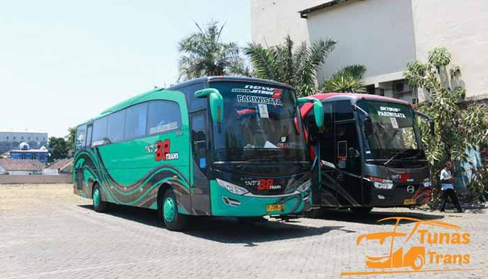 Daftar Harga Sewa Bus Pariwisata di Probolinggo Murah Terbaik