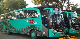Daftar Harga Sewa Bus Pariwisata di Probolinggo Murah Terbaru